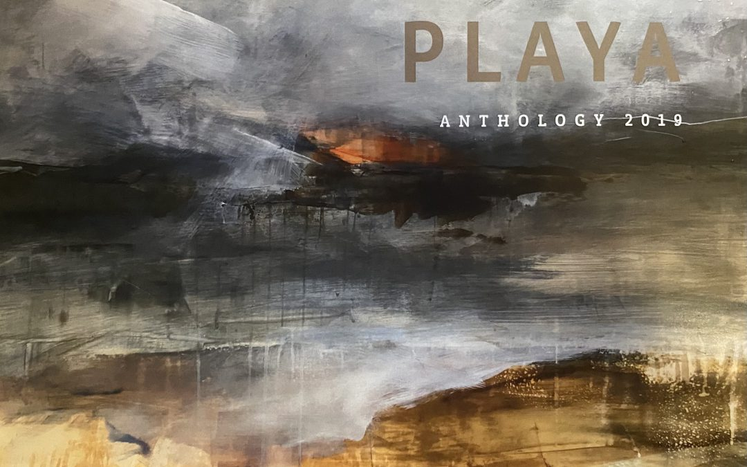 """Visit"" the High Desert Via New PLAYA Anthology"